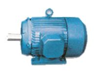 motor-supplier-india